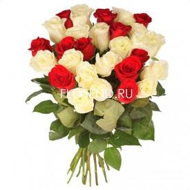 31 красная и белая роза